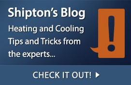 Follow the Shipton's Blog