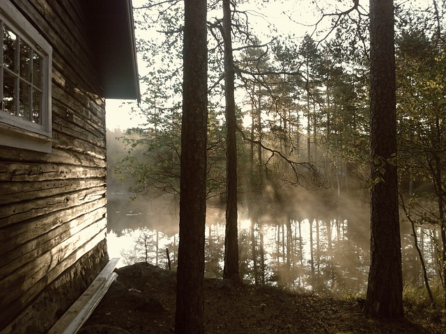 opening cottage mist